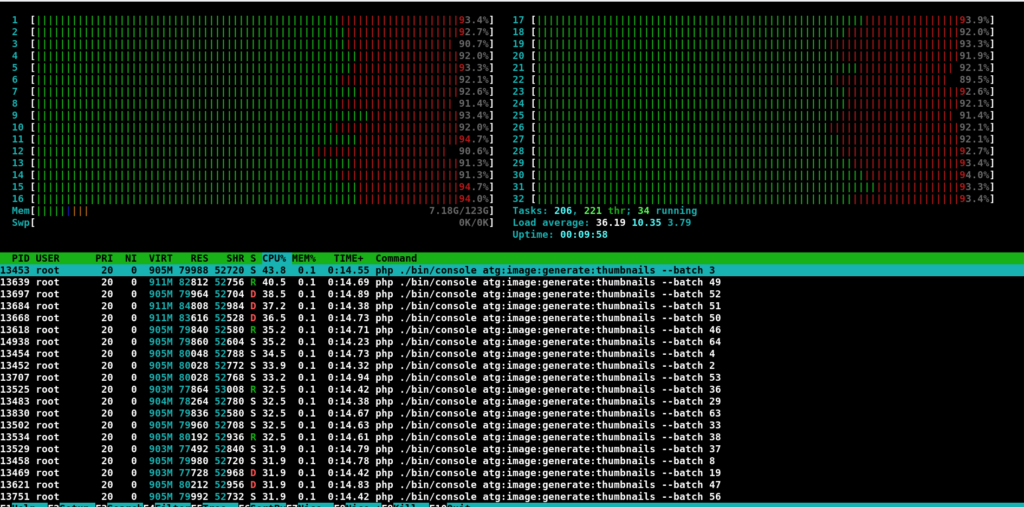 Linux htop console view with 32 CPU core  working diagramm (all cores are used) and text conole output of SW5 Thumbnail Generation Batches currently running